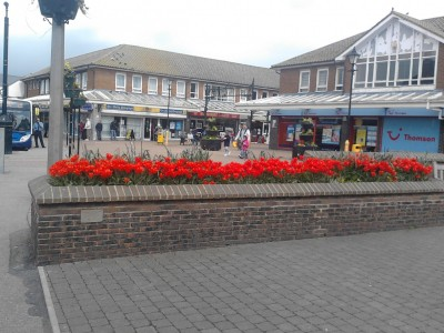 Hailsham In Bloom Projects 2