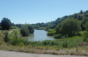 Hailsham Country Park