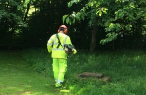 Photo of Hailsham Ground Works Staff member cutting grass