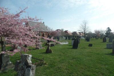 Photo of Hailsham Cemetery in Spring